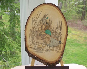 Mallard ducks Woodburning Pyrography