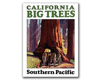 California Travel Poster Hiking Art Nature Print (H271)
