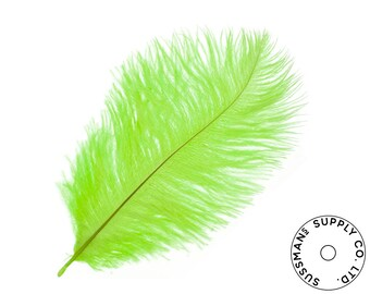 """Ostrich Feathers - Wholesale Wedding Feathers Ostrich Drab Plumes - Lime Green - 10pcs (14-17"""")"""