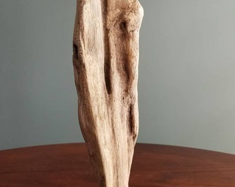 "Driftwood Sculpture ""Cinch"""