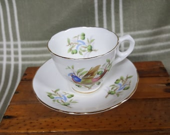 Beautiful Vintage Royal Stafford Bird Series 'Bunting' Cup & Saucer.