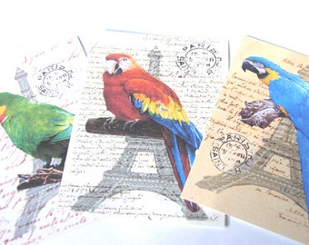 Tropical Bird Tags  - Set of 8 -  Parrot Tags  - Vintage Look - Vintage Parrot Tags - Gift Tags - Thank Yous - Colorful Birds