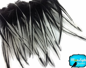 Laced Feathers, 10 Pieces - NATURAL WHITE Laced Medium Rooster Cape Feathers  : 2206