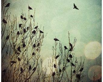 Fantasy Surreal Woodland Birds Green Art Print Flight