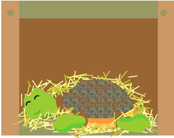 Illustrated children's book 'Dylan' about a rescue tortoise signed first edition sold for a tortoise pet rescue charity