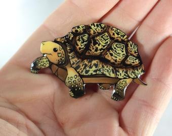 Leopard Tortoise  Magnet Gift for turtle tortoise lover for Locker Car or Fridge Tortoise loss memorial
