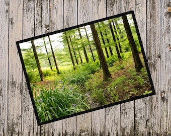 Life in the Forest 5x7 Blank Digital Greeting Card, Instant Download Printable Greeting Card