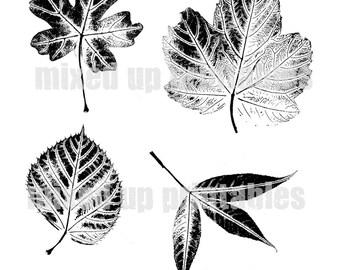 Mixed Up Printables - Leaf Prints
