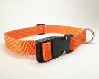 Collar Light 2 cm