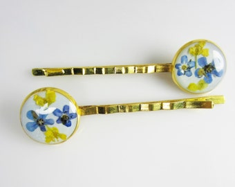 Blue Forget Me Nots, Pair of Real Flower Hair Pins,  Resin, Pressed Flower Jewelry, Gold Plated Brass (1679)