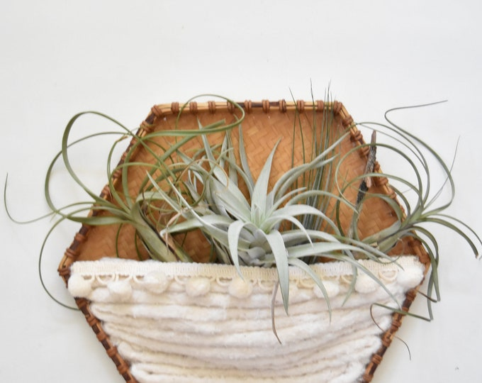 handmade octagon woven wall hanging fiber art air plant hanger / plant holder