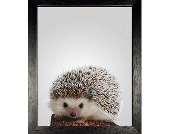 Hedgehog, Woodland Nursery, Woodland Animals, Nursery Animal Print, Animal Art, Hedgehog Wall Art, Kids Room Decor, Printable, Digital Print