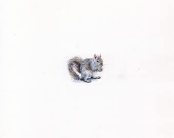 Print of Miniature painting of a Squirrel tiny painting art 5 x 5