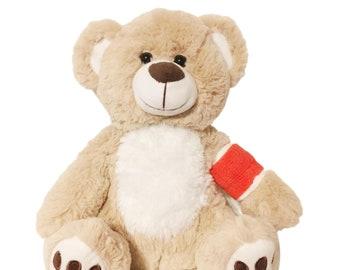 Red Cast Broken Arm Higgy Bear