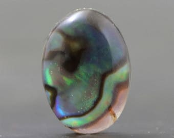 Abalone Cabochon Doublet in Glass Iridescent Chatoyant Organic Sea Cabochon (V019)