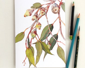 Soft cover notebook A5: 32 blank white pages inside; Eucalyptus branch on the cover; Australian gift; 100% post-consumer recycled paper