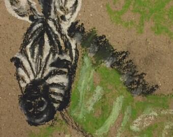 Zebra - Print of Original Drawing