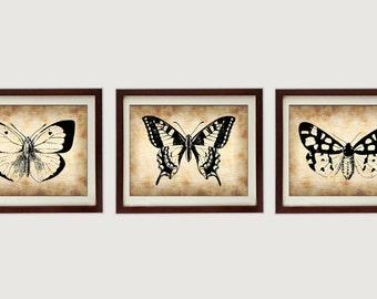 Télécharger INSTANT parchemin Style noir lot de 3 papillons Butterfly imprimables imprimer Wall Art déco Style Vintage animaux Nature