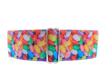Martingale Dog Collar, Jelly Bean Martingale Collar, Easter Martingale Collar, Jelly Bean Dog Collar, Easter Dog Collar, 1.5 Inch Dog Collar