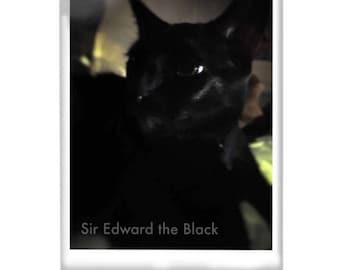 Sir Edward the Black Acrylic Block