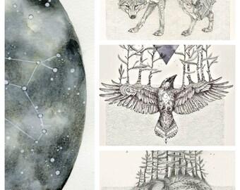 Cosmic Beasts- Animal Constellation art print set 11x14 - wolf - raven - bear