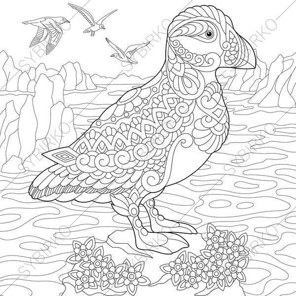 Puffin coloring pages animal coloring book pages for adults for Puffin coloring pages to print