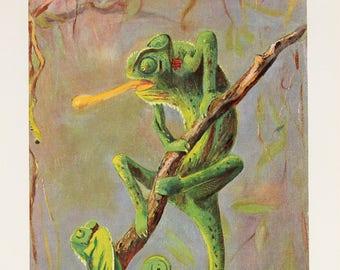 Antique Green Chameleon Print, Lizard, Reptile, Beautiful 1920 Colour Print, Lithograph