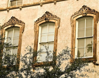 "Window Photography, Window Art, Old Architecture, Savannah Print, Noble Hardee Mansion, Southern Home, Gold Wall Art- ""Savannah Windows"""