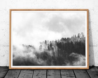 Forest Print, Forest Art, Black and White Forest, Nature Art, Wall Print Nature Printable Art, Forest Photo Print, Nature Prints, Forest Art