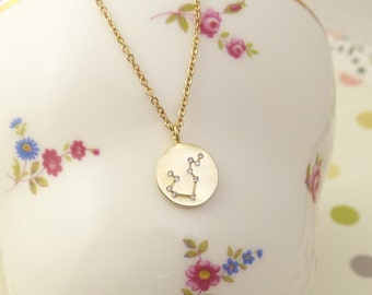 Aquarius Constellation Necklace,aquarius Necklace, Zodiac necklace,Constellation Jewelry,Gift idea,zodiac jewelry,astrology jewelry