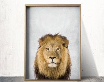 Safari Lion Art Lion Print Lion Wall Art Print Lion Poster Digital Download Print
