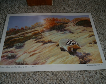 Art Print by Clarence Tillenius - Monarch Life Collection - Badger