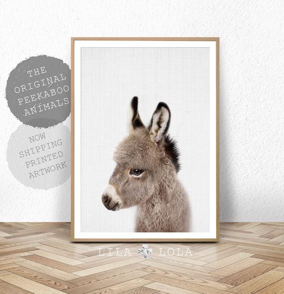 Donkey Print, Nursery Animal Wall Art, Baby Shower Gift, Kids Room Poster, Cute Baby Nursery Donkey Wall Art, Printed Art