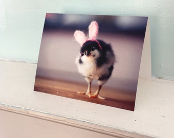 Note Card Chick in Rabbit Easter Bunny Ears Folded Photo Greeting Card Baby Animals (1)