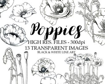 Black and White Poppies Clipart, Black and White Poppies Graphics, Poppies, Black and White Line Art