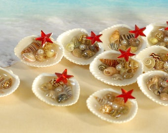 Mini Tidal Pool in Seashell