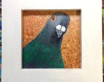 pigeon face