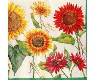 Set of 3 napkins PLA157 sunflower varieties