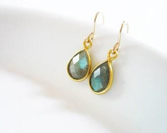 Tiny Labradorite Earrings in Gold Filled - Tear Drop Labradorite Gemstone and Gold Drop Earrings