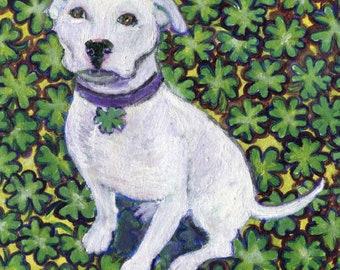 St. Paddy's Day,St. Patrick's Day,  Pitbull card art, Pitbull with shamrocks