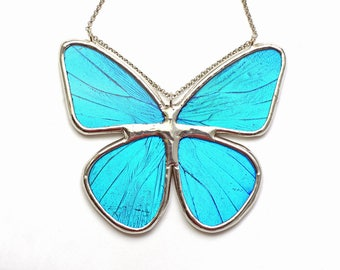 Real Butterfly Wing Necklace Blue Morpho Full Butterfly Statement Necklace