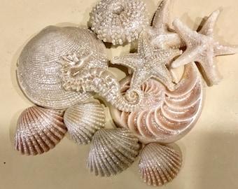 Lot of 11 Realistic Seashell Soaps - Beach, Soap, Nautical, Beach Wedding, Wedding Favors, Beach Theme, Guest Soap, Starfish, Custom Orders