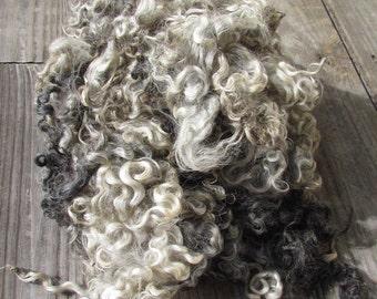Lincoln locks natural silver grey colored Lincoln wool locks 2 oz