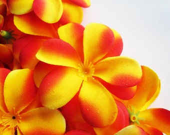 12 Red Yellow Plumeria Frangipani Heads - Artificial Silk Flower - 3 inches - Wholesale Lot - for Wedding Work, Make Hair clips, headbands