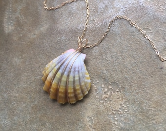 Lovely Yellow and White Sunrise Shell Pendant