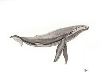 Humpback Whale Watercolour Painting - Original Handmade Art