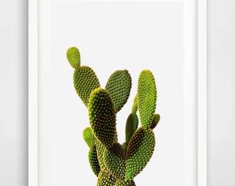 Cactus Print, Cactus Decor, Botanical Art, Cactus Art, Plant Prints, Cactus, Botanical Prints, Botanical Poster, Cactus Art Print, Green Art