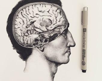 Brain Diagram Art Print | Medical Art, Vintage Illustration, Ink Drawing, Cerebrum, Dotwork, Blackwork, Neurology, Anatomy Art Study, 1800s