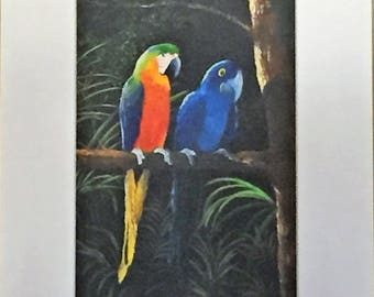 Two Macaws by Fran North, Hand Signed and Numbered
