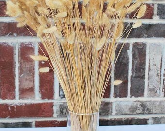 Natural Dried Bunny Tails | Bunny Tails | Dried Grass | 4 oz Bunny Tails Grass